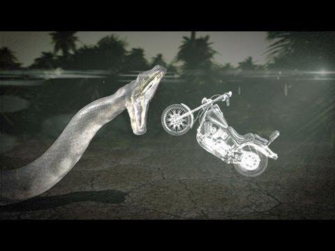 Titanoboa: Monster Snake - Could Titanoboa Swallow a ...