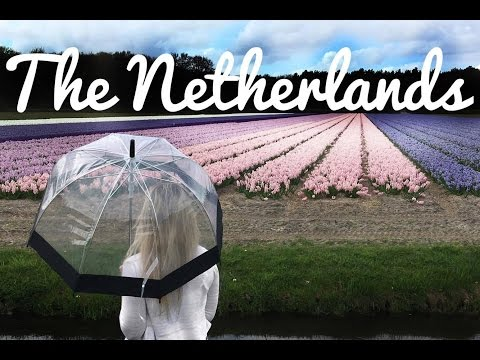 Travel Diary | The Netherlands
