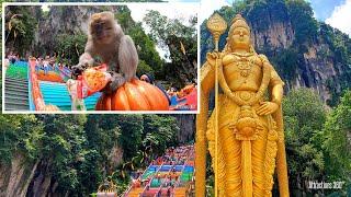 Batu Caves Malaysia - Roaming Monkeys -  Kyoto, Ja...