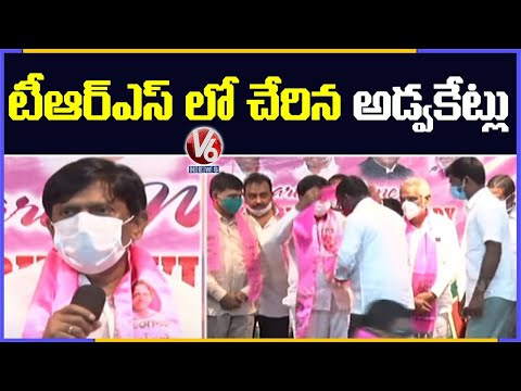 Advocates Joins In TRS In Presence Of Ex MP Vinod Kumar | V6 News