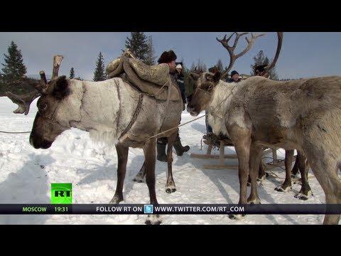 Reindeer Races: A Freezing Adventure (RT Documentary)