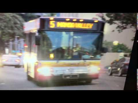 TheBus Honolulu 2003 Gillig Advantage #522 Route 5 Picture