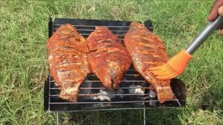 Ultimate Fish Barbecue Catch N Cook Cooking Sweet and Spicy Fish Barbecue from Scratch