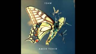 Wooden Toy - Amon Tobin
