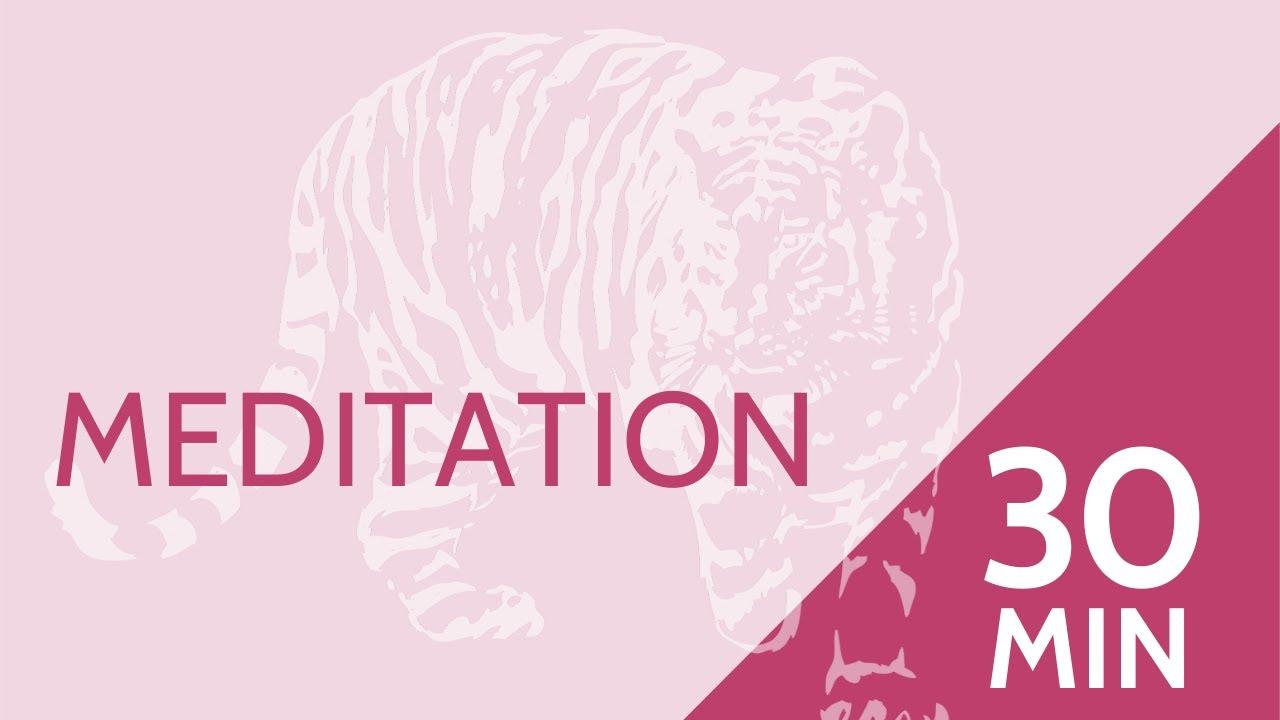 30 minute - Guided Meditation - Yoga Nidra With Charles for BYA