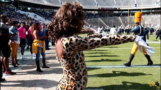 Southern University Fabulous Dancing Dolls Highlights | State Fair Showdown | 2018