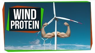 How Engineers Are Turning Wind into Protein Powder