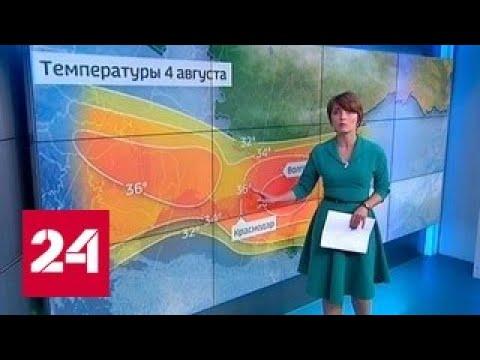 Погода 24: в Волгограде на улице жарят яичницу