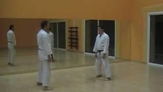 Heian Godan bunkai-kumite