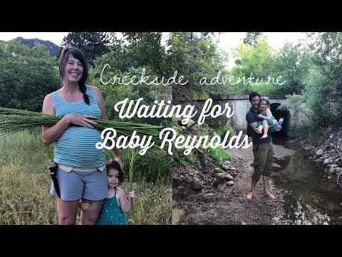 WILLOW BASKET WEAVING - CREEKSIDE ADVENTURE!  Waiting for BABY REYNOLDS