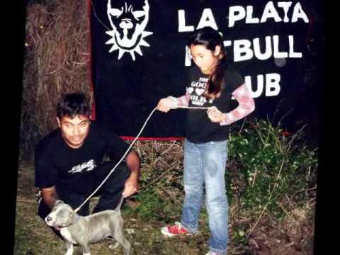La Plata Pitbull´s Club 1°Encuentro!!