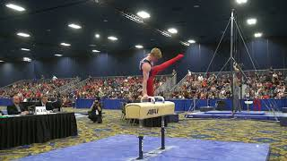 Riley Loos - Pommel Horse - 2018 Winter Cup - Finals thumbnail