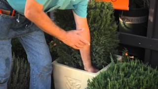 How to Water a Topiary : Fall & Winter Gardening Tips