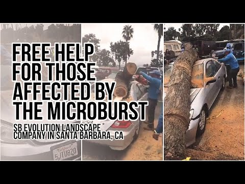 Free help for Affected by the Microburst Santa barbara 2