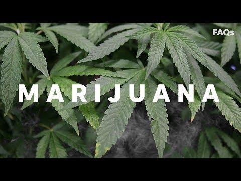 Marijuana logo wallpaper 420 dating