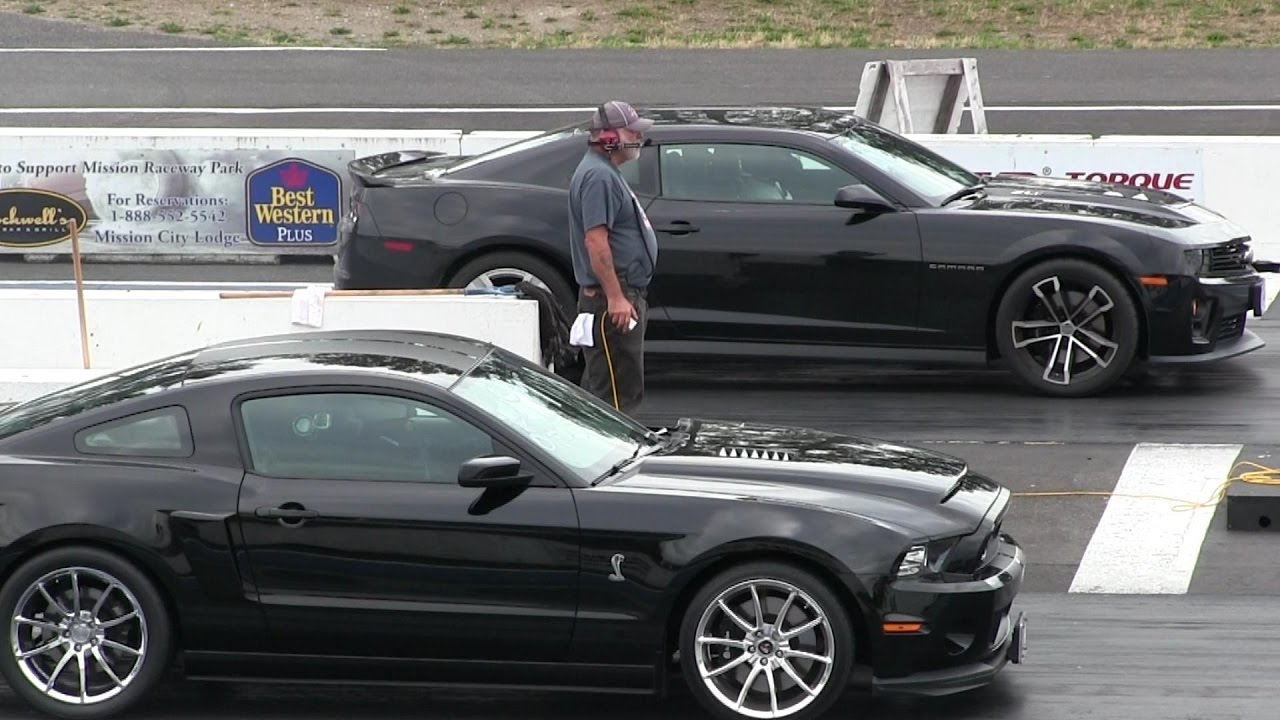 shelby super snake vs zl1 chevy camaro 1 4 mile drag race. Black Bedroom Furniture Sets. Home Design Ideas