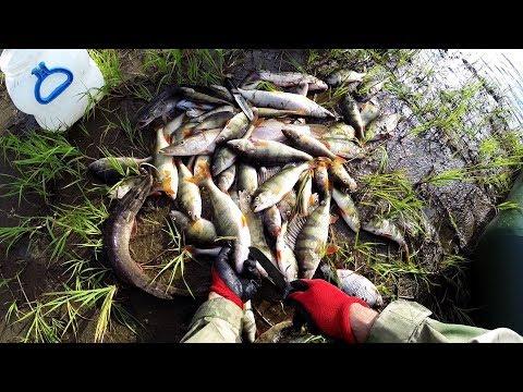 Рыбалка на севере,