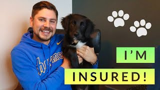 Pet Insurance: What it costs, what it covers, and how to find the best screenshot 5