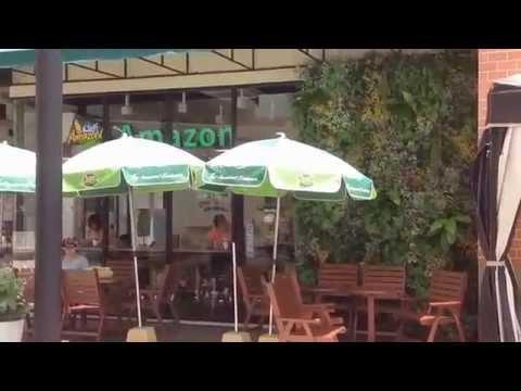 สวนแนวตั้งไม้ประดิษฐ์องค์ประกอบของการตกแต่งร้านสีเขียว