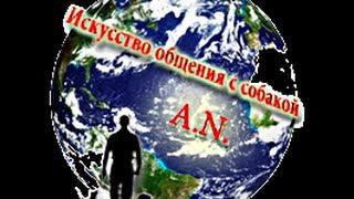 "ПОВОДОК-ОШЕЙНИК ""КОНТРОЛЛЕР"""