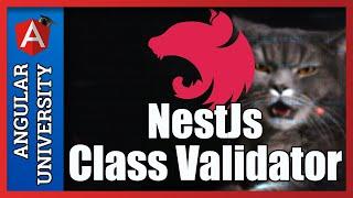 💥 NestJs Decorator based Validation using Class Validator