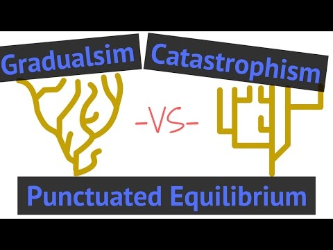 Process of Evolution | Gradualism vs Punctuated Equilibrium vs Catastrophism