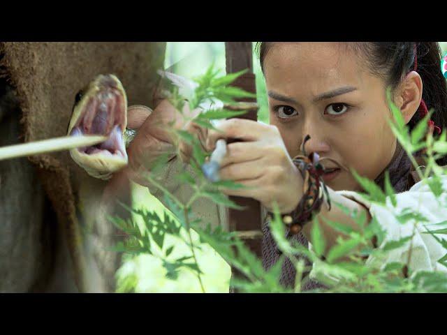 Nữ Thợ Săn Với Mũi Tên Đầy Nọc Độc Rắn Tiêu Diệt Cả Đoàn Quân Tinh Nhuệ   Đại Chiến Sinh Tử   888TV