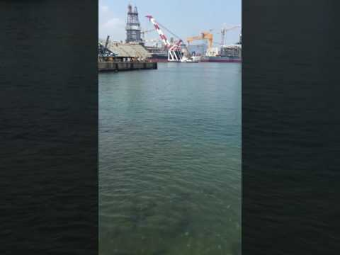 The world 2nd biggest shipbuilding company