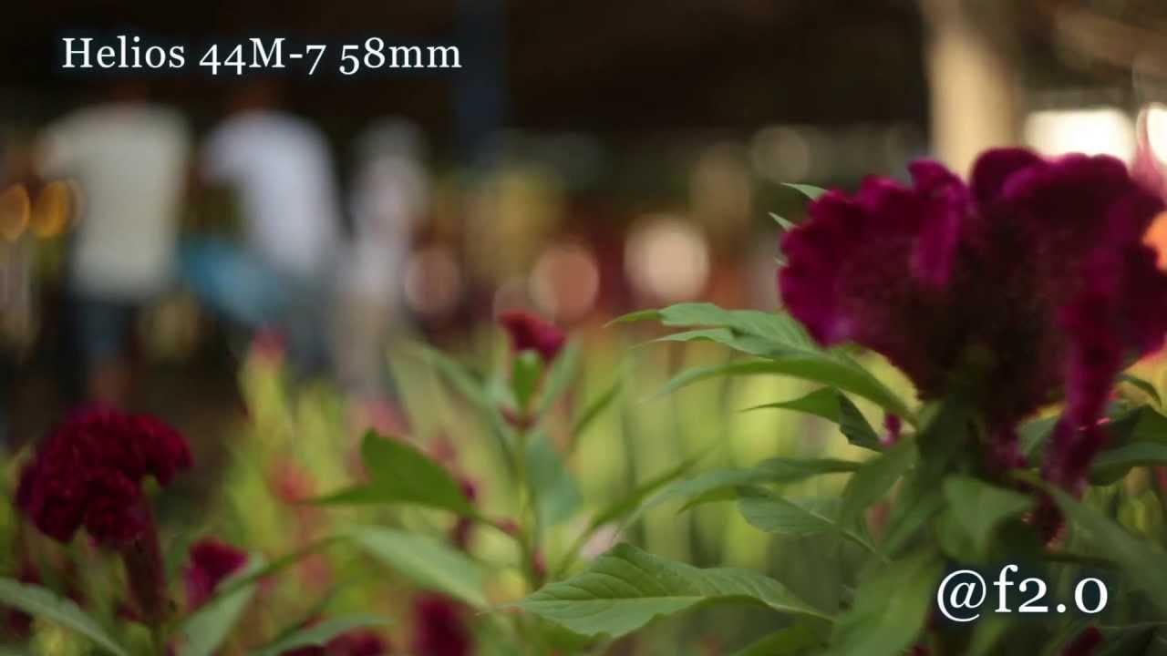 Sigma 50mm vs Takumar 50mm vs Helios 44 - Video Test 50mm lenses at full  frame