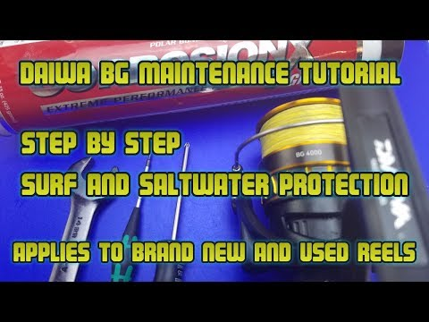 Daiwa BG Full maintenance and service tutorial. How to protect your reel against  sand and saltwater