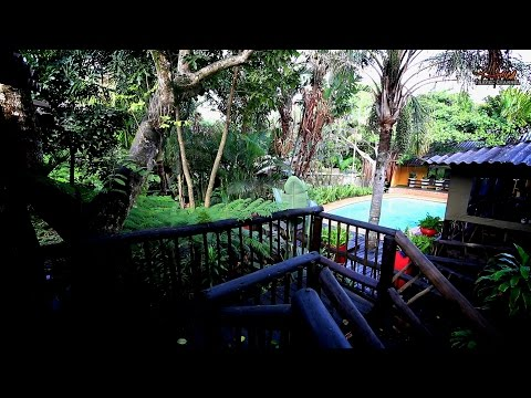 Umlilo Lodge - Accommodation St Lucia South Africa - Africa Travel Channel