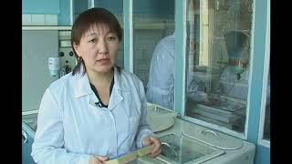 """Фильм """"Диагностика и профилактика хламидиоза"""", 2007 г."""