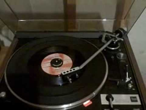 The Rolling Stones- Stupid Girl- Vinyl