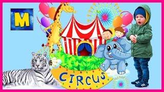 ЦИРК  CIRCUS  Детское игровое видео про цирк на Фонтанке  Тигры, носорог, клоуны и акробаты