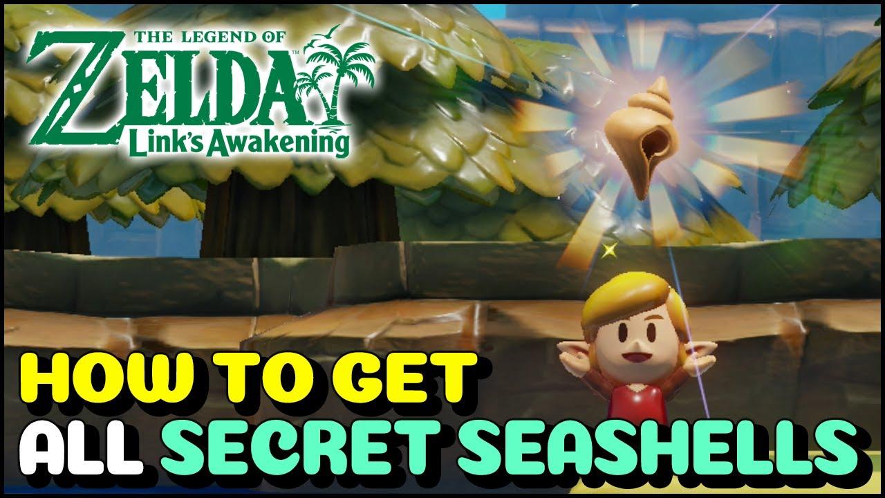 All Secret Seashells Location Rewards The Legend Of Zelda Link S Awakening