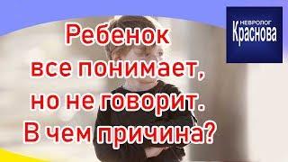 Ребенок все понимает но не говорит В чем причина Задержка речевого развития Доктор Краснова.