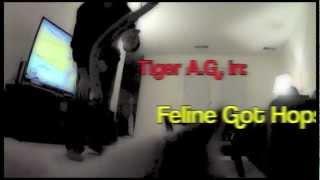 Tiger got mad hops...