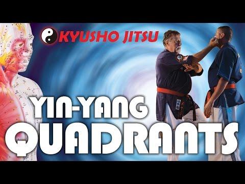 Yin Yang QUADRANTS - Energy ~ JP Bindel