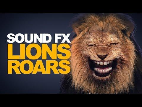 LION ROAR   Sound Effect [High Quality]