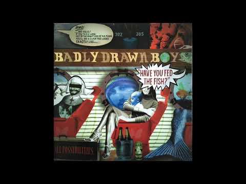 Badly Drawn Boy - How?