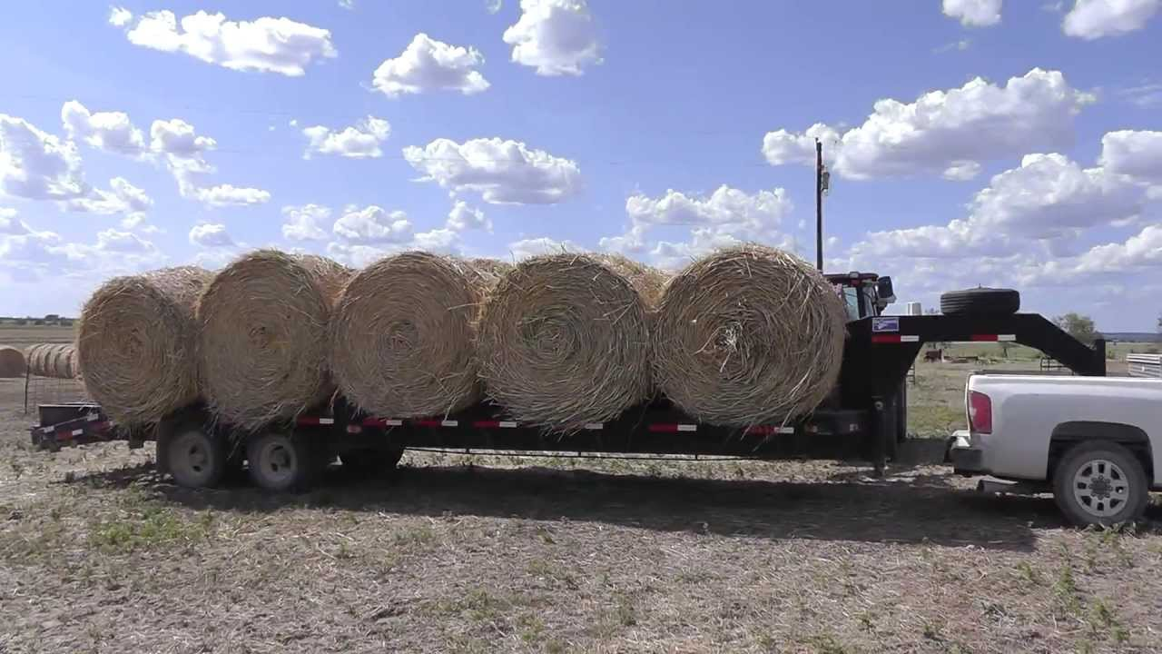 Half Ton Truck >> Hauling Hay With LML Duramax - YouTube