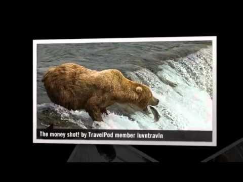 """Brooks Falls Bear Gathering"" Luvntravln's photos ..."