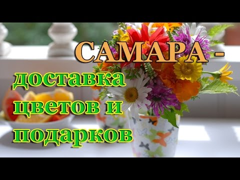 Как красиво подарить цветы девушке?из YouTube · С высокой четкостью · Длительность: 37 с  · Просмотры: более 9.000 · отправлено: 15.10.2014 · кем отправлено: Екатерина Цветаева