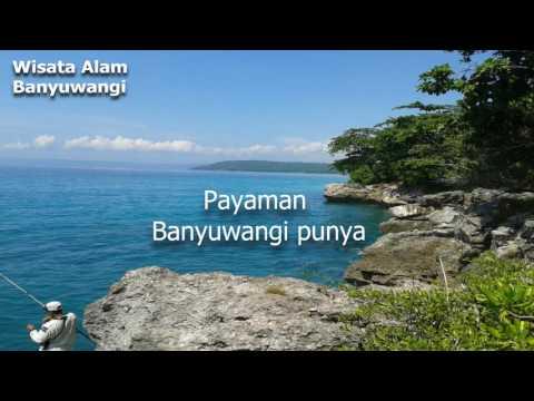 Pantai Payaman - Kawasan Alaspurwo ( Resort Muncar II )