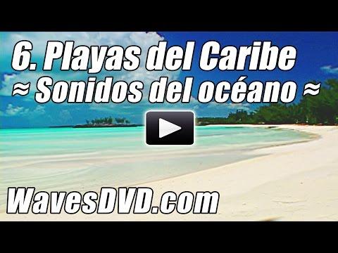 6 - Mejores Playas del Caribe Ondas DVD Relajacion naturaleza Videos relajantes oceano sonidos relax