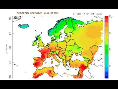 The Global Climate 2001-2010