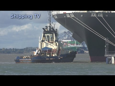 Up close: 14,080 TEU YM World sailing from Felixstowe, 18 0ctober 2016