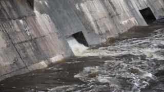 Bomberos realizaron una limpieza en el dique Roggero - Horacio Fernández