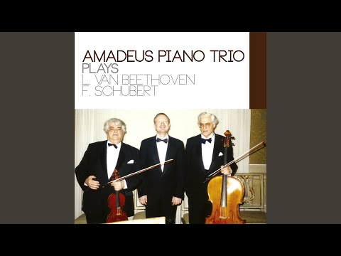 Piano Trio in E-Flat Major, Op. 100, D. 929: II. Andante con moto