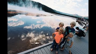 Yellowstone National Park - Close encounters with Wild Life and Natural Phenomenons